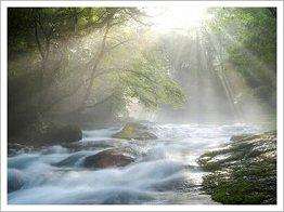 自然無料写真素材12